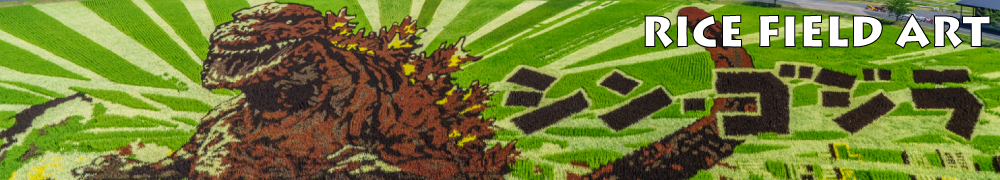 rice-field-art